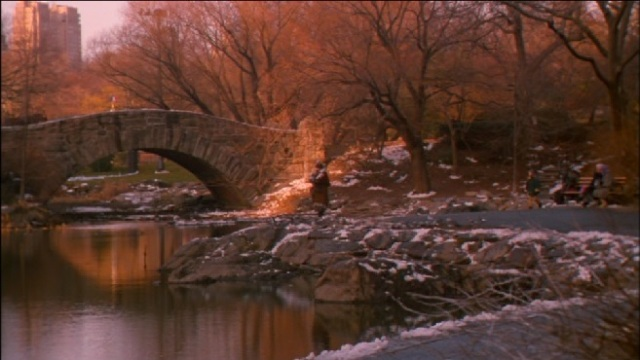 "Central Park in de film ""Home Alone"""